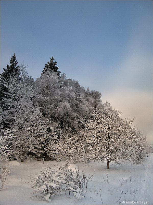 Лыжные походы по Подмосковью - окрестности реки Шерна