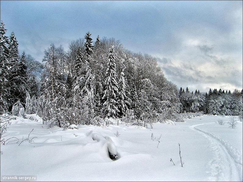 Лыжные походы по Подмосковью - окрестности Абрамцево