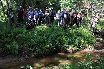 В лесу множество мелких болот, родников, ручьев и речек, которые...