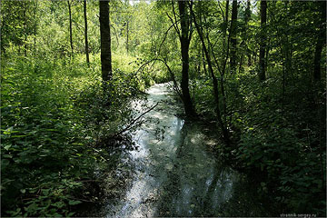 Река Вондига