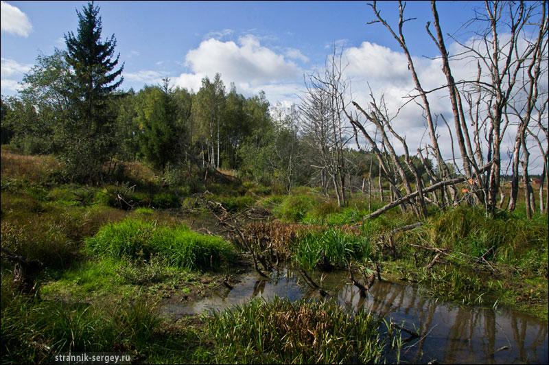 Клязьма река где находится исток реки и куда впадает
