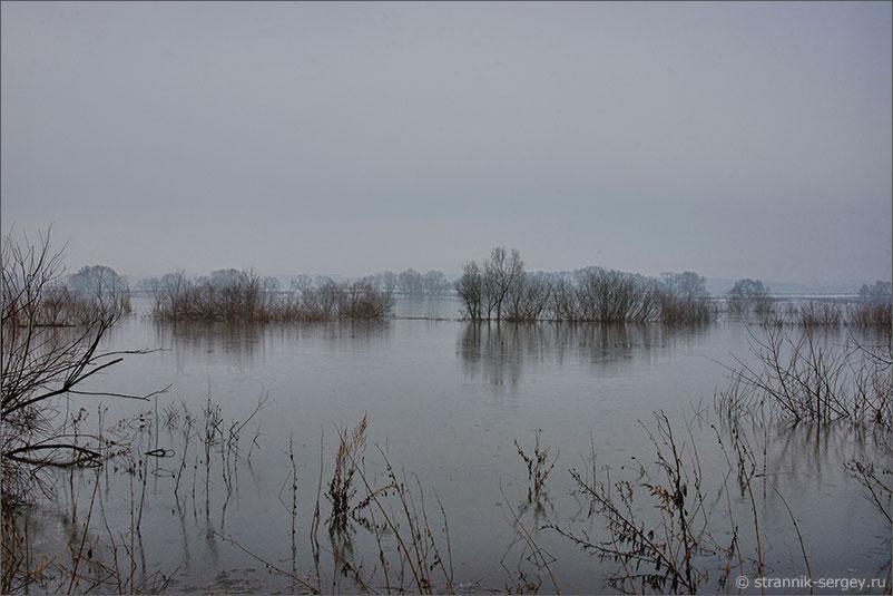 Река Ока половодье