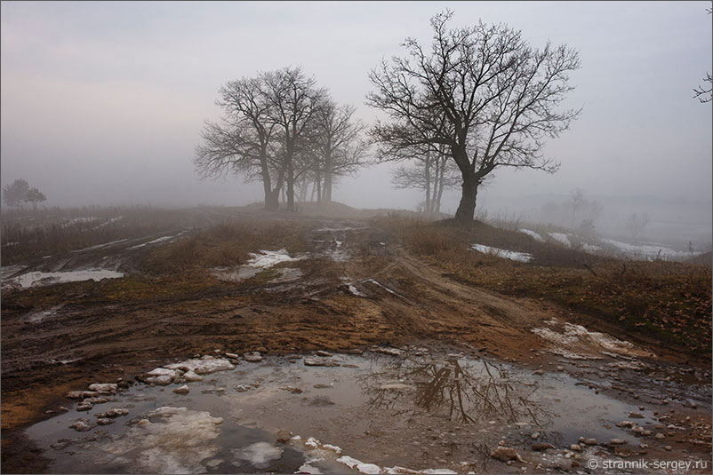 Река Ока дорога на берегу