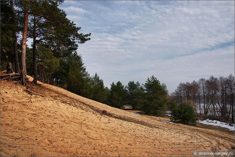 Река Ока песчаные террасы