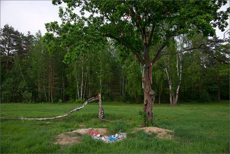 Река Киржач - Поляна невест