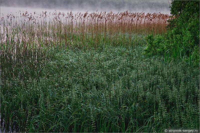 Русская природа - Монастырское озеро