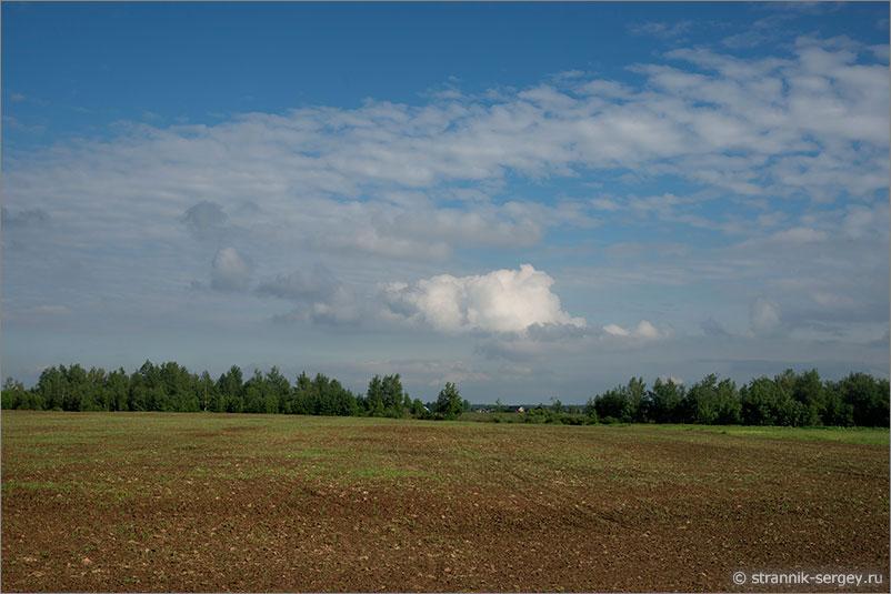 Русская природа - поле