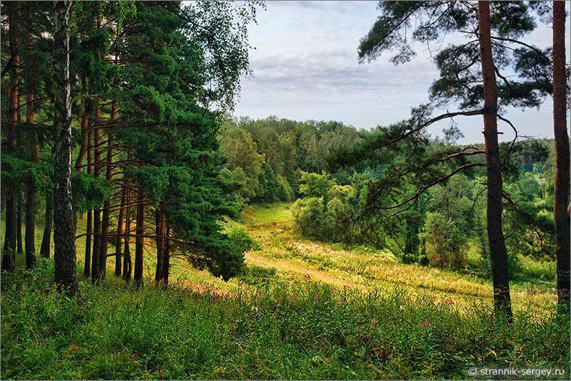 Реки Подмосковья леса долины