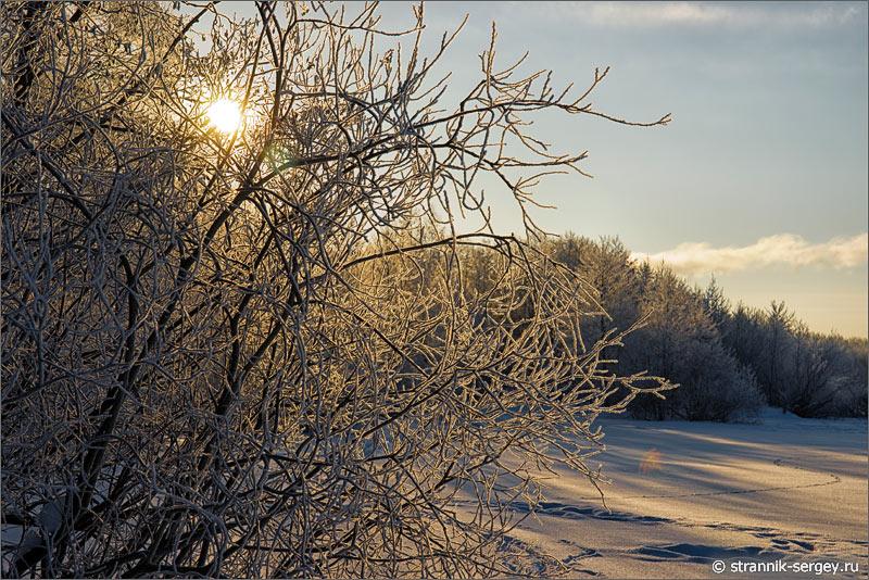 Зима мороз солнце иней