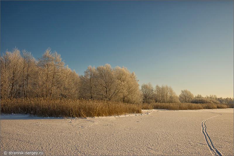 Зима берез озера