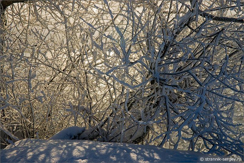 Зима мороз солнце