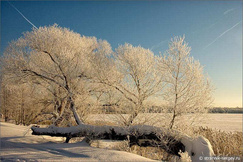 Зима мороз солнце иней снег