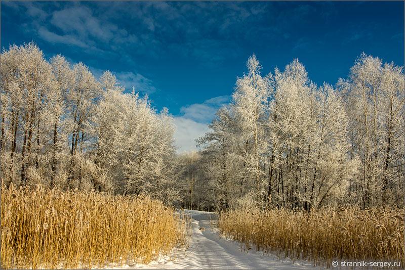 Зима роскошная зима