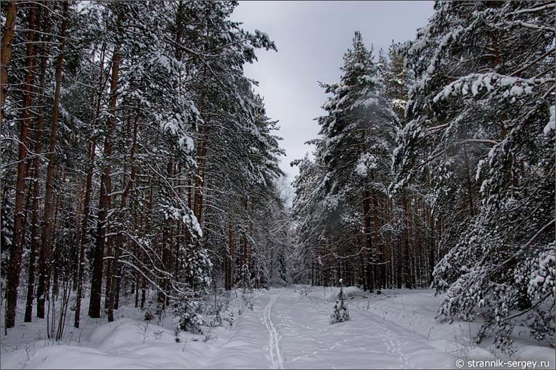 http://www.strannik-sergey.ru/2014/1/2014-02-01-Syshmor/photos/2014-02-01-5257.jpg