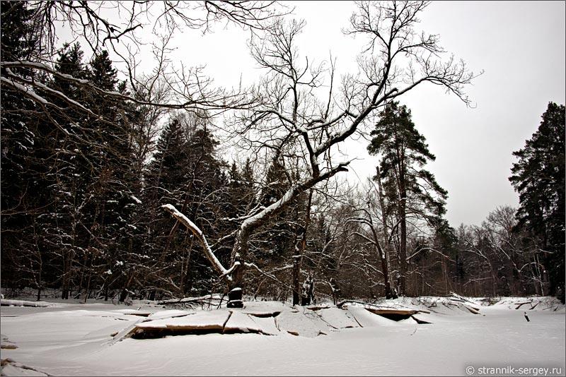 река Поля река зимой