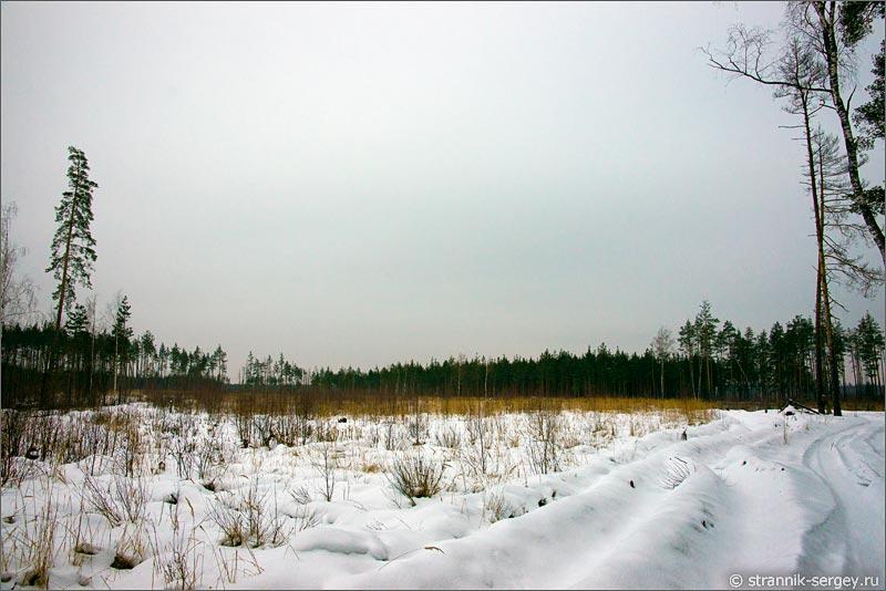 озеро Смердячье леса