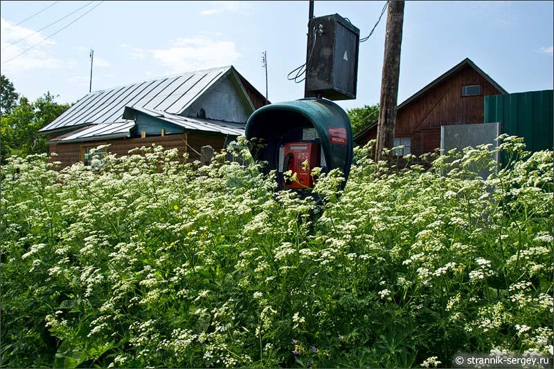 Деревня Аграфенино на берегу реки Исьма