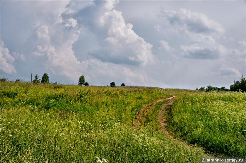 река Протва, холмы, дорога