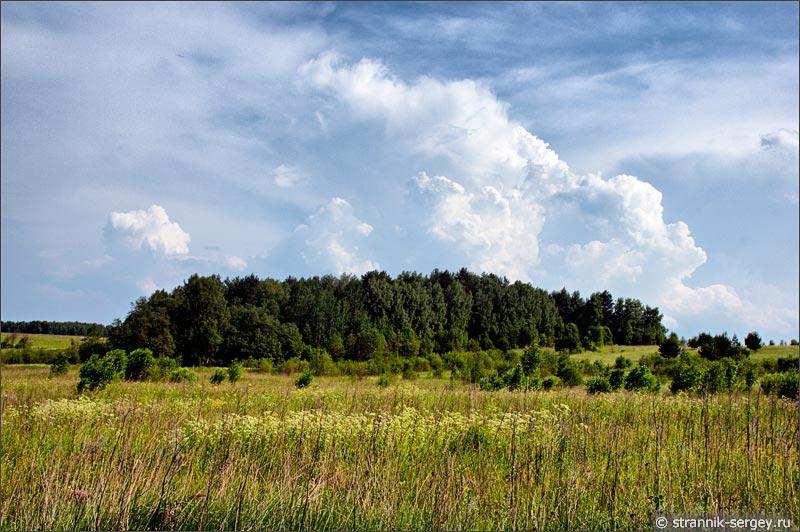 Холмы в долине Протвы