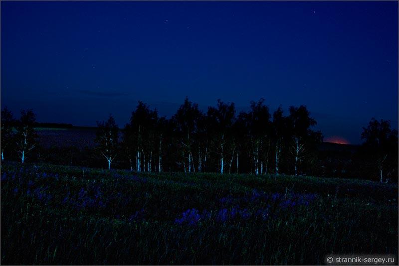 природа ночью летняя ночь фото