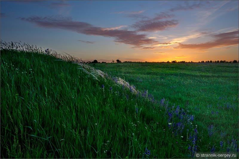 Летнее утро восход солнца река Осетр луг поле