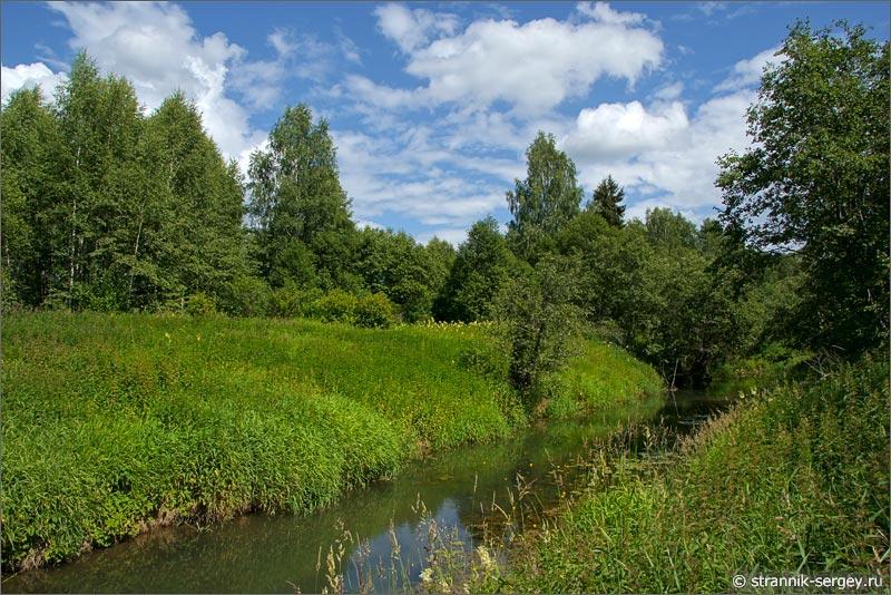 река Дубна зеленые берега луга желтые кувшинки