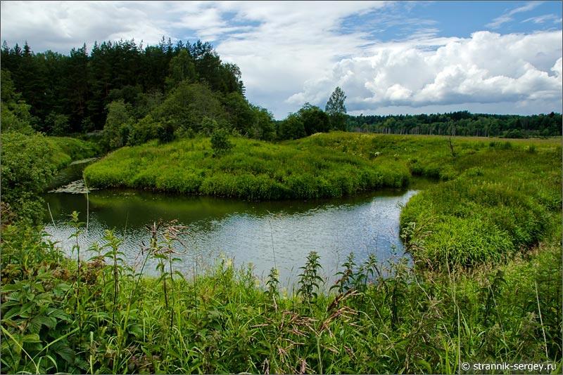малая река заливые луга полевые цветы