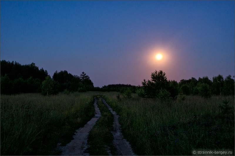 знакомства на ночь в лесу