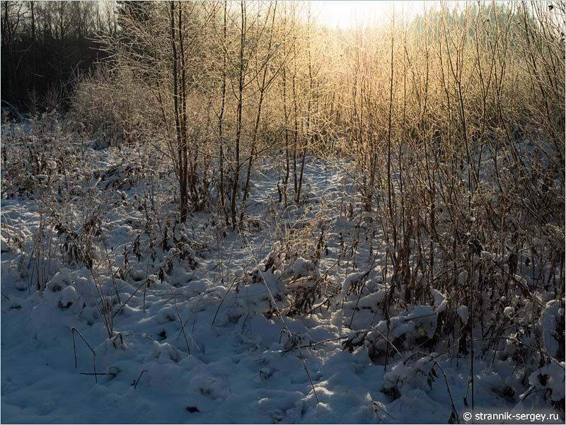 Рождественская история - снег и иней