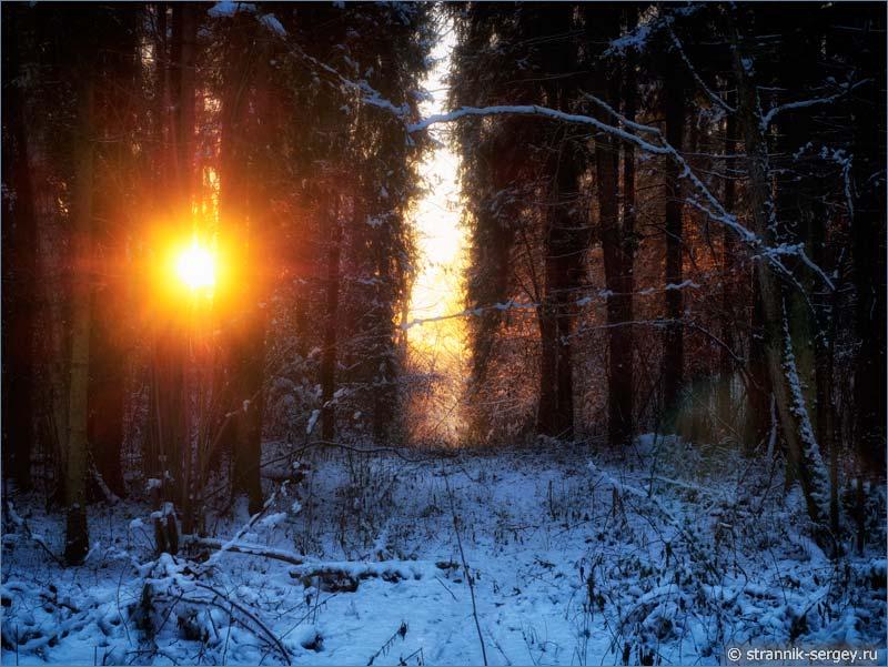 Рождественская история - солнце