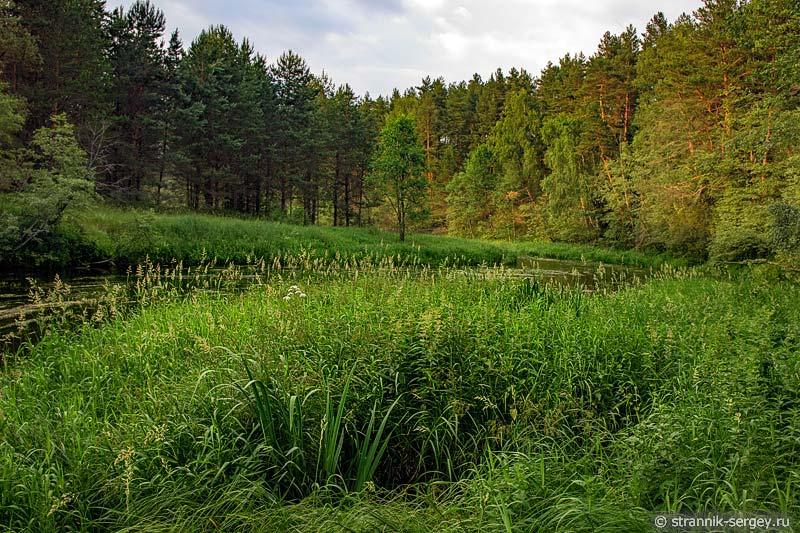 Река Нерль Клязьменская