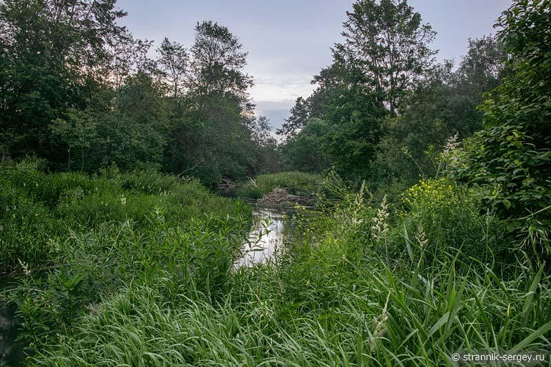 Река Шаха