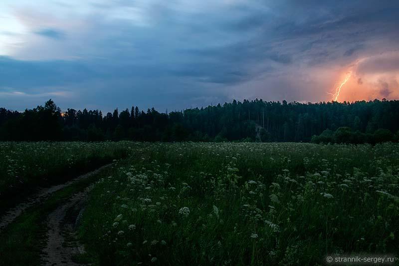 Молнии над лесом
