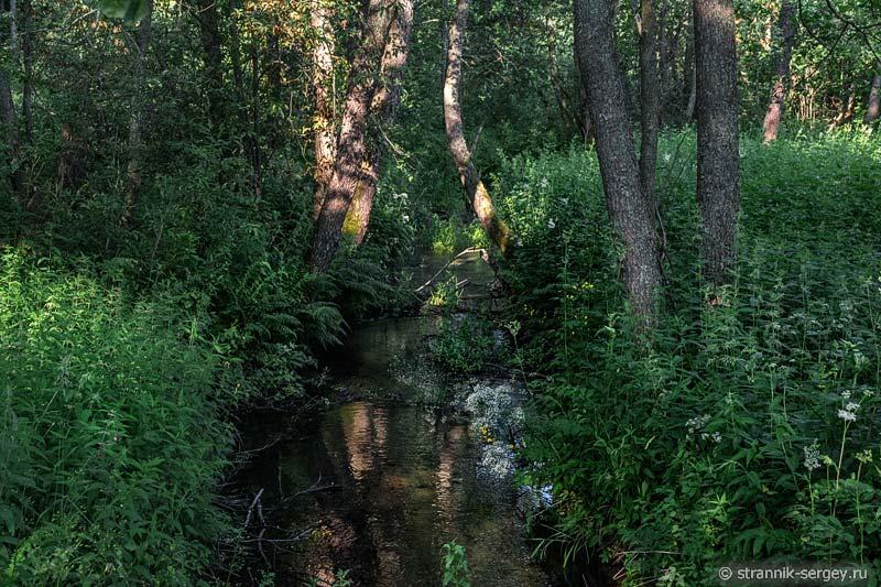 Безымянная речка